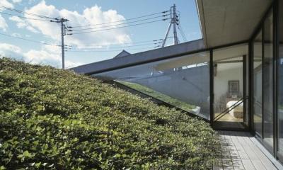 前橋の家 (芝生屋根のある2階テラス)
