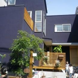 木が溢れる家 (外観(日中))
