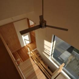 木が溢れる家 (天井から眺めた渡り廊下全体)
