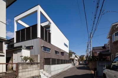 藤沢の家/Na邸 (外観1)