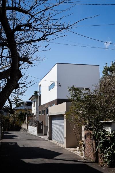 藤沢の家/Na邸 (外観2)