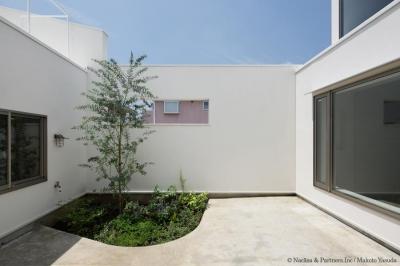 緑が映える中庭(撮影:安田誠) (ごろりの家)
