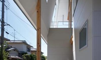 house AA (玄関-軒下(撮影:KAI NAKAMURA))