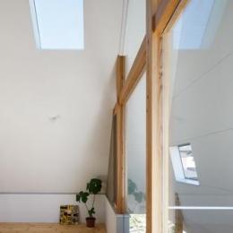 house AA (ガラス張りの窓(撮影:KAI NAKAMURA))