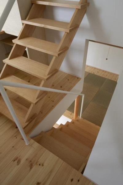 読書する家 (畳スペースとつながる階段(撮影:上田宏))