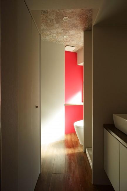 神泉リノベーション(東京都目黒区S邸)の部屋 トイレ(撮影:樽井利和)