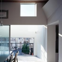 光と風を共有する家 (親子で光と風を共有する開口2)