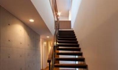 東区 アオダモの家 (階段(撮影:車田写真事務所))