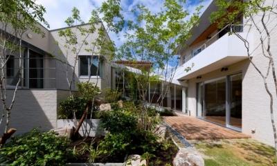 NAG-house  スキップフロアーの家 (緑生い茂る中庭1)