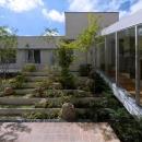 緑生い茂る中庭2