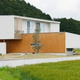大きなオリーブの家