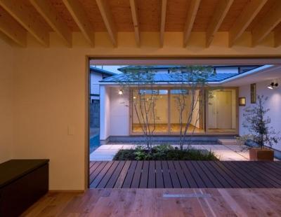 平屋のコートハウス (リビングから中庭を見る)