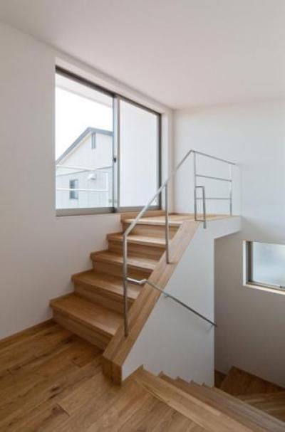 平屋のコートハウス (テラスへ出る階段)
