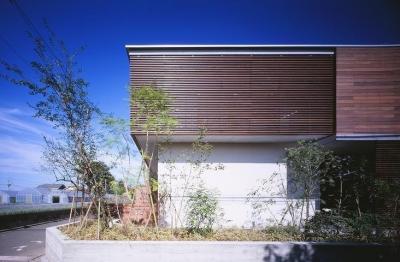 木ルーバーの家 (外観)