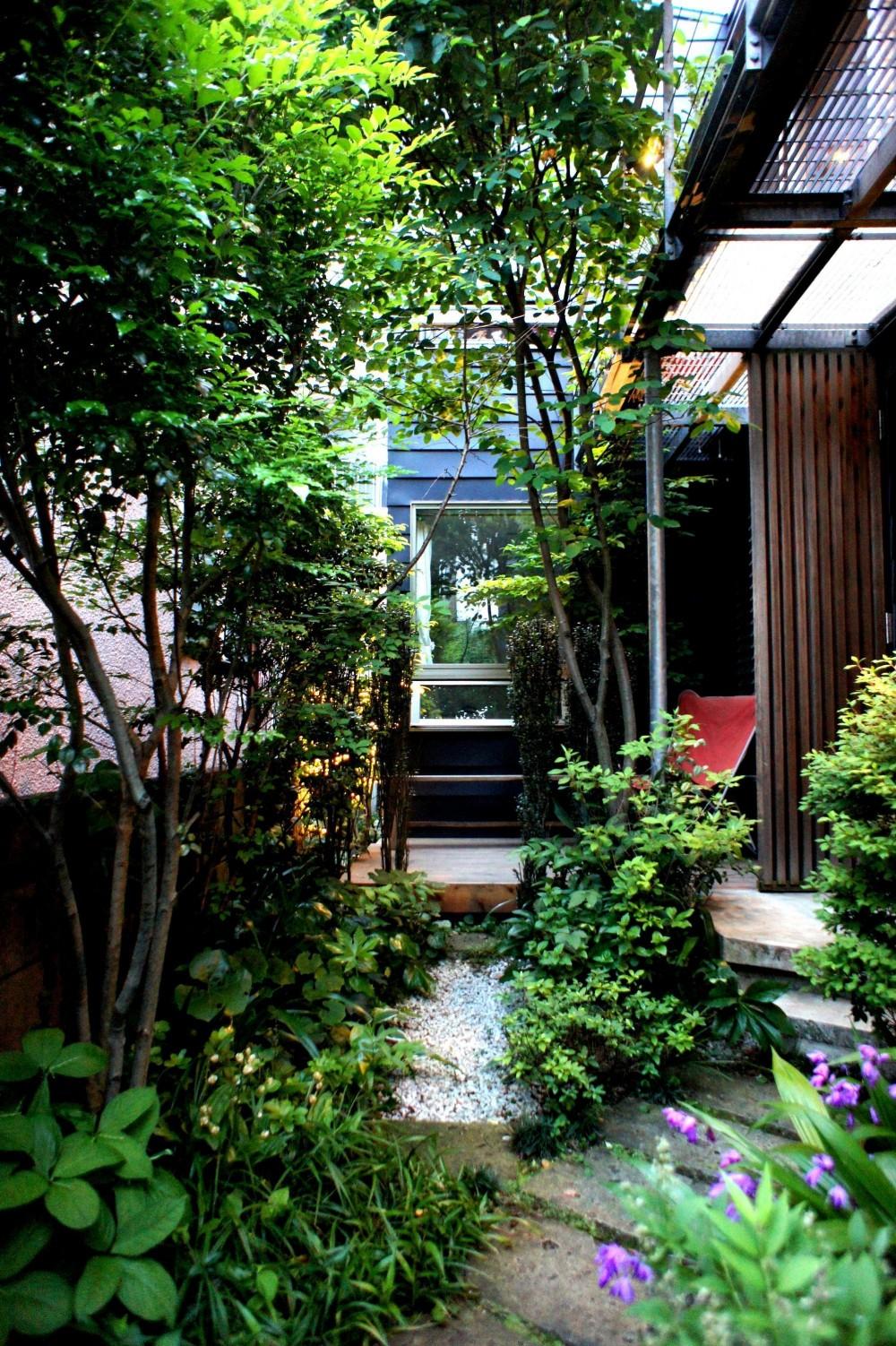 石神井台の家 (中庭のアプローチ)