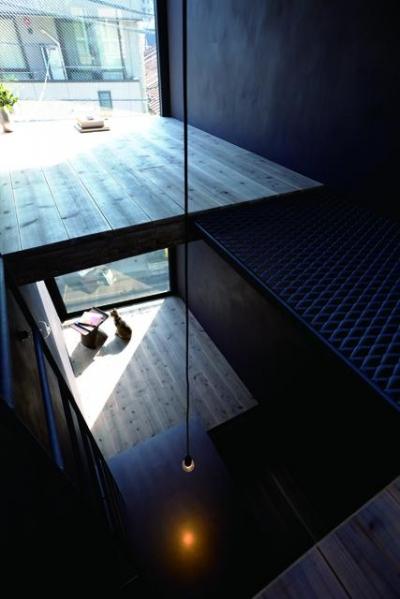 1.8M幅の家 (ダイニングを上階から見下ろす(撮影:傍島利浩))
