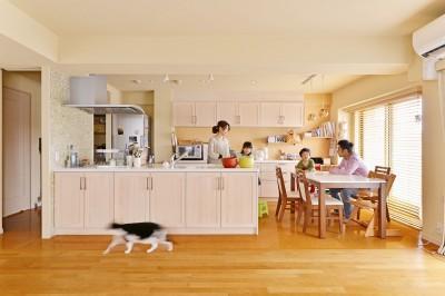 鎌倉市I様邸 ~こだわりの間取り・素材・色で作る子育て住まい~ (家具のようなフラット対面キッチン)