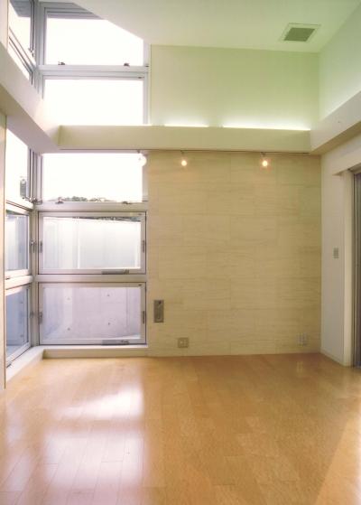 S邸-家の中に外を内包した家-神戸 (リビング)