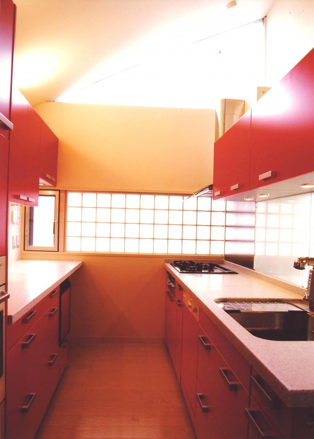 S邸-家の中に外を内包した家-神戸 (キッチン)