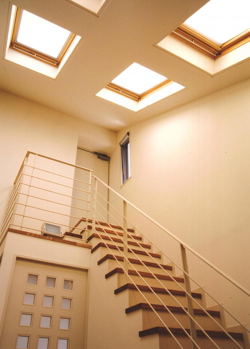 S邸-家の中に外を内包した家-神戸 (階段)