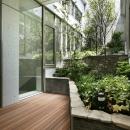 東中野の住宅-2(K邸アネックス)の写真 ガーデン