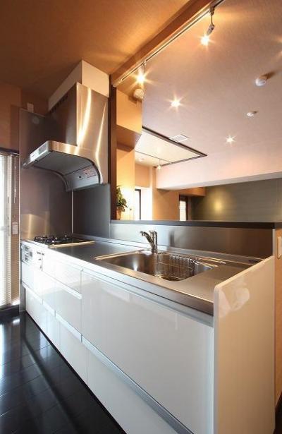 エレガントスタイルの家 (機能的なキッチン)