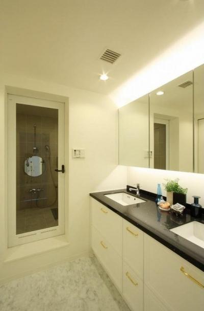 雰囲気のある洗面スペース (統一感のある家)
