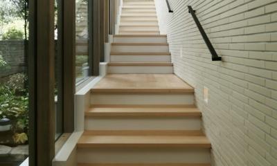 東中野の住宅-2(K邸アネックス) (階段)
