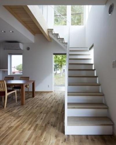 階段下ホール (M-size)