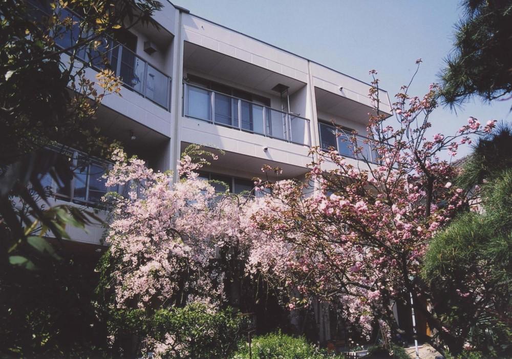 H邸-親子三世帯で住むこだわりの家-芦屋 (外観)