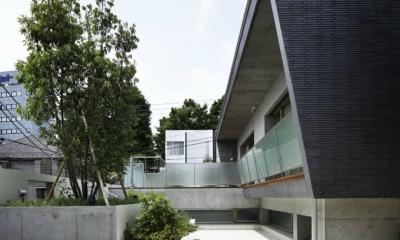 東中野の住宅-2(K邸アネックス) (外観)