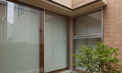 住宅密集地で陽光の恵みを受けるRC住宅|つばさの家 (コハウチワカエデのある中庭)