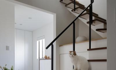 階段|図書室階段でアカデミックに