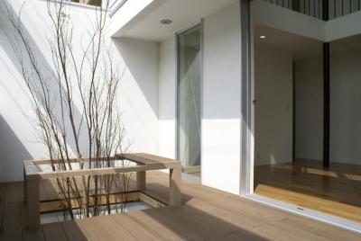 モダンな雰囲気の中庭 (SA邸)