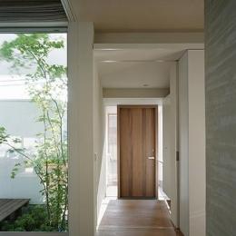 Vector (玄関から廊下にかけて)