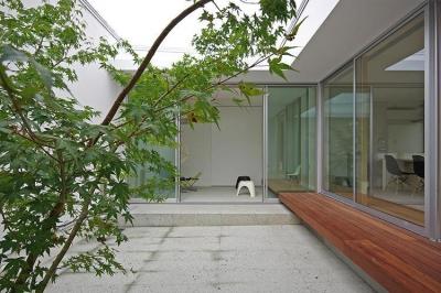 中庭 (平尾の家)