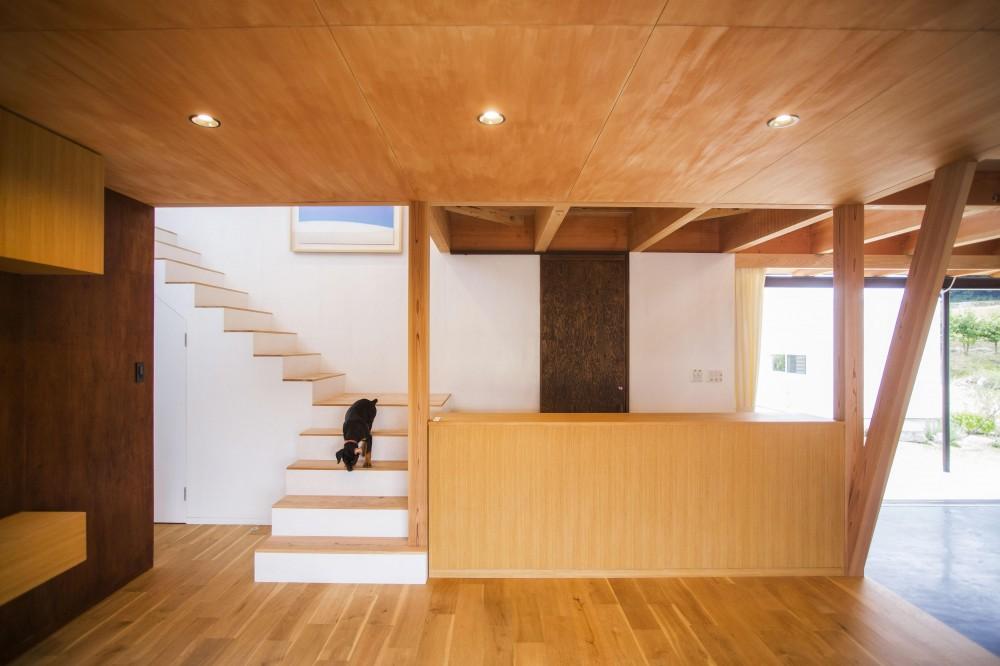 とうおんの家 (階段)