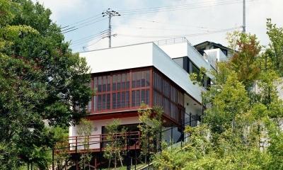 傾斜地の家1 (南東外観)