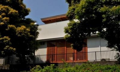 公園側外観2|中庭のある家