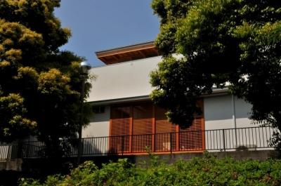 中庭のある家 (公園側外観2)
