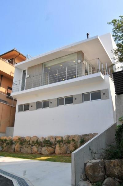 傾斜地の家2 (南側道路外観1)