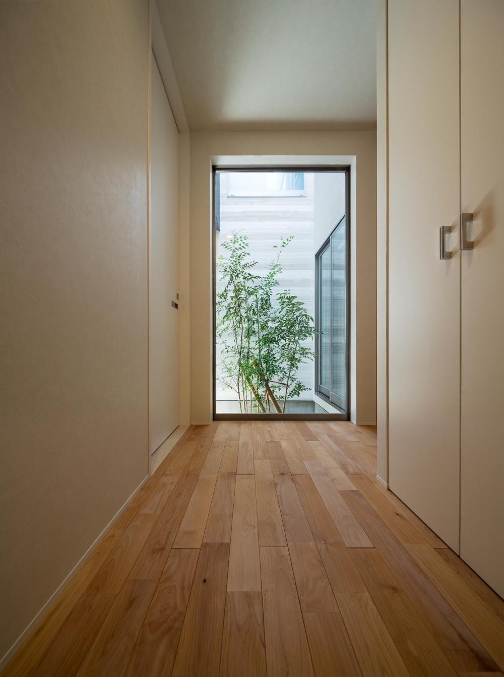 N10-house「グリッドの家」 (玄関)