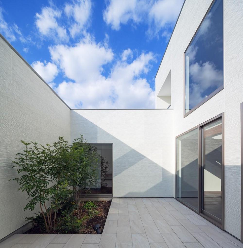 A2-house「shell house」 (中庭)