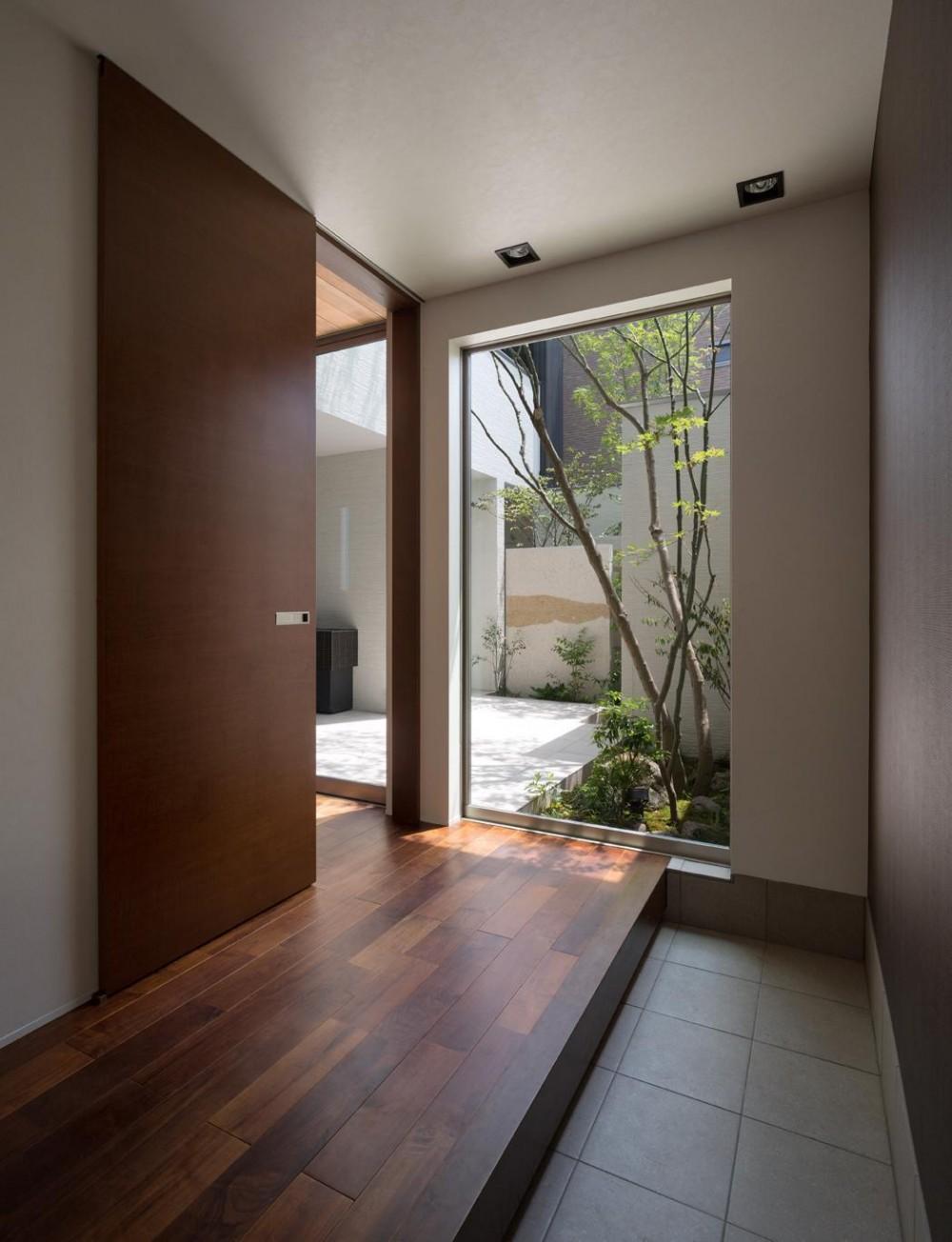 M4-house「重なり合う家」 (玄関ホール)