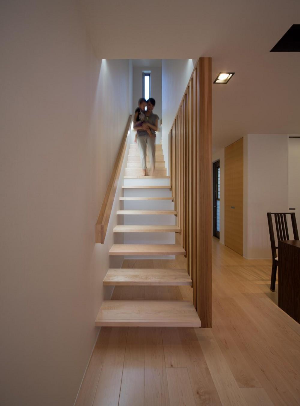 Y2-house・Y3-house 「縦と横の家」 (階段)