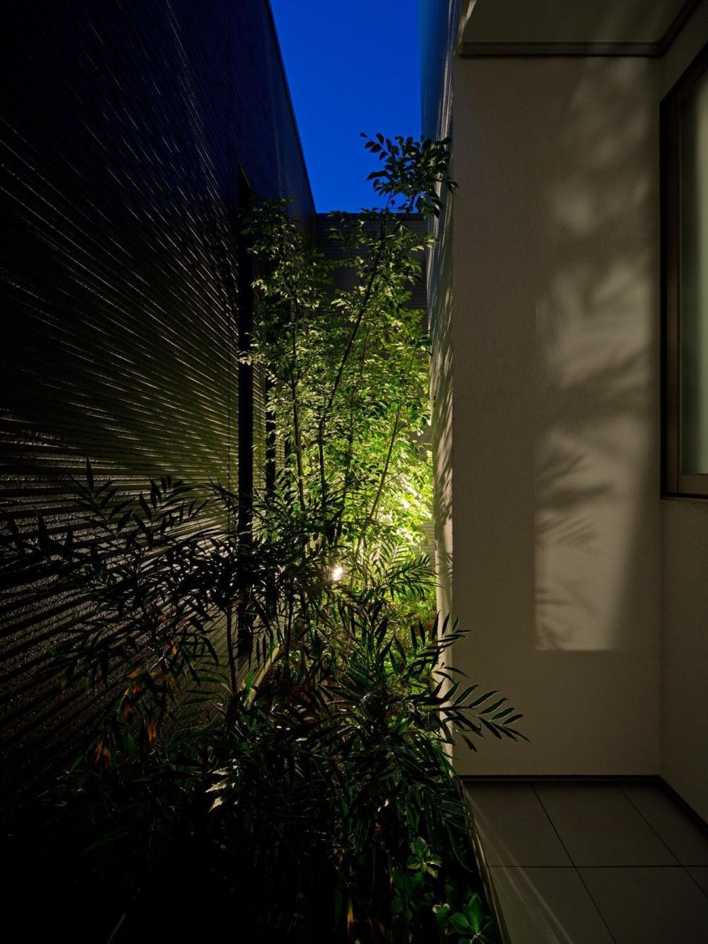 K5-house「スローライフの家」 (中庭)