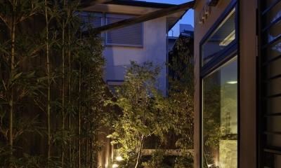京都市Tn邸 (庭アプローチ)