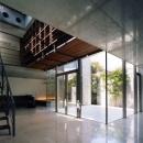 新宿の住宅 NISの写真 リビングルーム