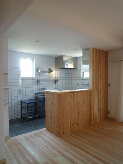 個人住宅 神奈川県 2014 (コンパクトなキッチン)