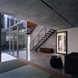 新宿の住宅 NIS (リビングルーム)